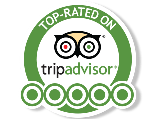 tripadvisor still flying high on its journey to instant