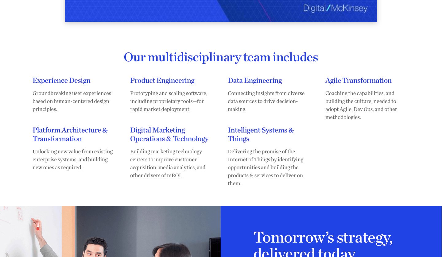 McKinsey & Co. Digital Labs multidisciplinary teams, (from Digital Labs home page)
